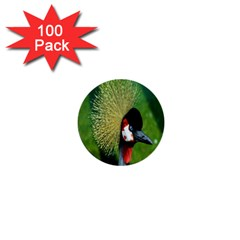 Bird Hairstyle Animals Sexy Beauty 1  Mini Buttons (100 Pack)  by Mariart