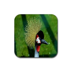 Bird Hairstyle Animals Sexy Beauty Rubber Coaster (square)  by Mariart