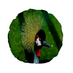 Bird Hairstyle Animals Sexy Beauty Standard 15  Premium Flano Round Cushions by Mariart