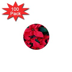 Red Poinsettia Flower 1  Mini Magnets (100 Pack)  by Mariart
