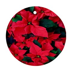 Red Poinsettia Flower Round Ornament (two Sides) by Mariart