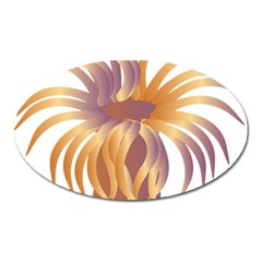 Sea Anemone Oval Magnet by Mariart