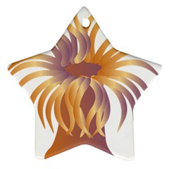 Sea Anemone Star Ornament (two Sides) by Mariart