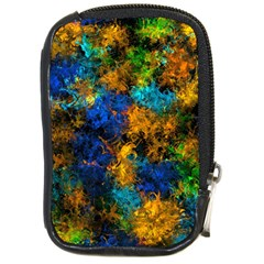 Squiggly Abstract C Compact Camera Cases by MoreColorsinLife