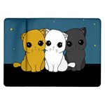 Cute cats Samsung Galaxy Tab 10.1  P7500 Flip Case