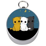 Cute cats Silver Compasses
