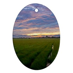 Landscape Sunset Sky Sun Alpha Ornament (oval)