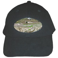 Rice Fields Terraced Terrace Black Cap