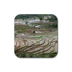 Rice Fields Terraced Terrace Rubber Square Coaster (4 Pack)  by Nexatart