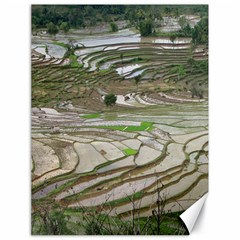 Rice Fields Terraced Terrace Canvas 18  X 24