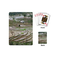 Rice Fields Terraced Terrace Playing Cards (mini)  by Nexatart