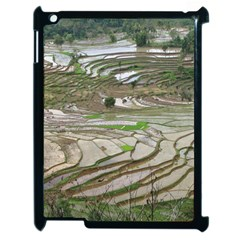 Rice Fields Terraced Terrace Apple Ipad 2 Case (black) by Nexatart