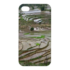 Rice Fields Terraced Terrace Apple Iphone 4/4s Premium Hardshell Case by Nexatart