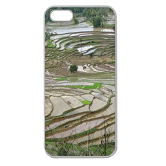 Rice Fields Terraced Terrace Apple Seamless Iphone 5 Case (clear)