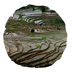 Rice Fields Terraced Terrace Large 18  Premium Round Cushions
