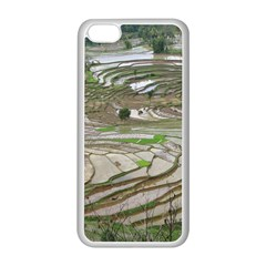 Rice Fields Terraced Terrace Apple Iphone 5c Seamless Case (white) by Nexatart