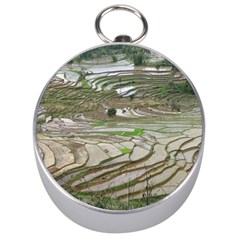 Rice Fields Terraced Terrace Silver Compasses