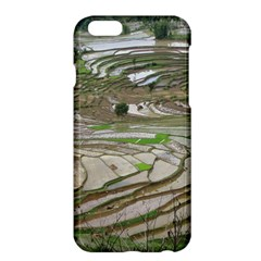 Rice Fields Terraced Terrace Apple Iphone 6 Plus/6s Plus Hardshell Case