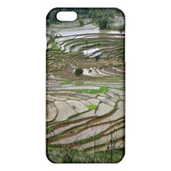 Rice Fields Terraced Terrace Iphone 6 Plus/6s Plus Tpu Case