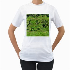 Greenery Paddy Fields Rice Crops Women s T-Shirt (White) (Two Sided)