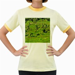 Greenery Paddy Fields Rice Crops Women s Fitted Ringer T-Shirts
