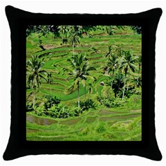 Greenery Paddy Fields Rice Crops Throw Pillow Case (black) by Nexatart