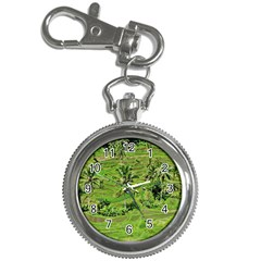 Greenery Paddy Fields Rice Crops Key Chain Watches