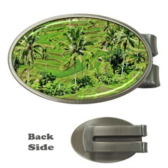 Greenery Paddy Fields Rice Crops Money Clips (oval)