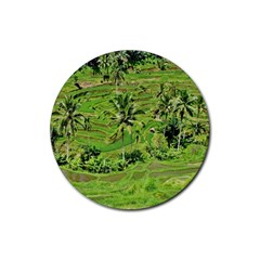 Greenery Paddy Fields Rice Crops Rubber Round Coaster (4 Pack)