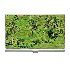 Greenery Paddy Fields Rice Crops Business Card Holders