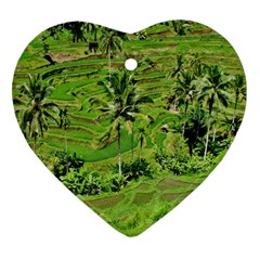 Greenery Paddy Fields Rice Crops Heart Ornament (Two Sides)