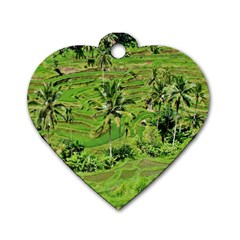 Greenery Paddy Fields Rice Crops Dog Tag Heart (one Side)