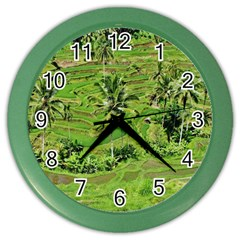 Greenery Paddy Fields Rice Crops Color Wall Clocks by Nexatart