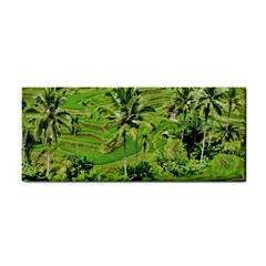 Greenery Paddy Fields Rice Crops Cosmetic Storage Cases