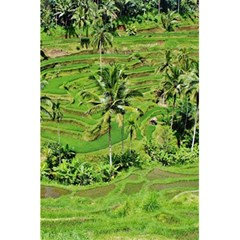 Greenery Paddy Fields Rice Crops 5 5  X 8 5  Notebooks by Nexatart