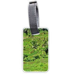 Greenery Paddy Fields Rice Crops Luggage Tags (one Side)  by Nexatart