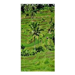 Greenery Paddy Fields Rice Crops Shower Curtain 36  X 72  (stall)  by Nexatart