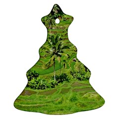 Greenery Paddy Fields Rice Crops Christmas Tree Ornament (Two Sides)