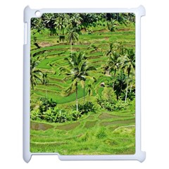 Greenery Paddy Fields Rice Crops Apple Ipad 2 Case (white) by Nexatart