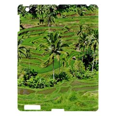 Greenery Paddy Fields Rice Crops Apple Ipad 3/4 Hardshell Case