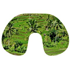 Greenery Paddy Fields Rice Crops Travel Neck Pillows