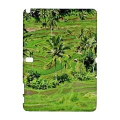 Greenery Paddy Fields Rice Crops Galaxy Note 1