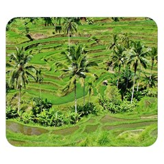 Greenery Paddy Fields Rice Crops Double Sided Flano Blanket (small)  by Nexatart