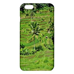 Greenery Paddy Fields Rice Crops iPhone 6 Plus/6S Plus TPU Case