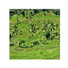 Greenery Paddy Fields Rice Crops Small Satin Scarf (Square)