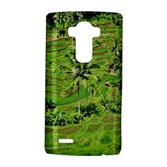 Greenery Paddy Fields Rice Crops Lg G4 Hardshell Case by Nexatart