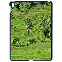 Greenery Paddy Fields Rice Crops Apple Ipad Pro 9 7   Black Seamless Case by Nexatart