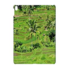 Greenery Paddy Fields Rice Crops Apple Ipad Pro 10 5   Hardshell Case by Nexatart