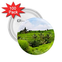 Bali Rice Terraces Landscape Rice 2 25  Buttons (100 Pack)