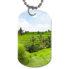Bali Rice Terraces Landscape Rice Dog Tag (one Side)